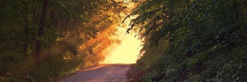 Estar por inteiro no momento presente é uma forma de se iluminar